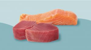 Thon vs saumon: Qui est le plus sain?